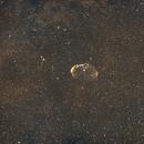 C27 Crescent Nebula-Ha-Ha-Ha+OIII-OIII-Meade 80 ED triplet-Orion flattener-ASI 1600 MM-Pro,                                Adel Kildeev