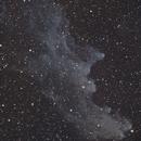 Witch Head Nebula (IC 2118),                                Christian Vial Arce