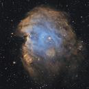 NGC2174 The Monkey Head Nebula,                                Ianto1111
