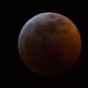 Luna Eclipse 1/21/2019,                                Ryan Kinnett