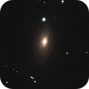 M63 - The Sunflower Galaxy,                                Nightsky71