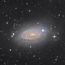 Messier 63 Galaxie du Tournesol,                                Rémi Méré