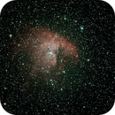 Pacman Nebula,                                Robin Clark - EAA imager