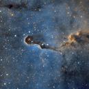 IC 1396 (Elephant Trunk),                                John Leader