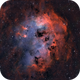 The Tadpoles Nebula  IC410 Bicolor,                                Bogdan Jarzyna