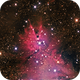 The Cone Nebula in Monoceros - NGC2264,                                Terry Danks