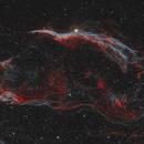 Witch's Broom: Western Veil Nebula - Supernova Remnant in the constellation of Cygnus,                    Steve Milne