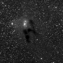 vdB31 and Barnard 26, 27, and 28,                                mwil298