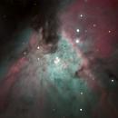 Core of Orion Nebula,                                Dylan Woodbrey