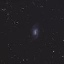 NGC 3359,                                Josef Büchsenmeister