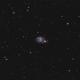 NGC-7741,                                Joel Shepherd