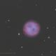 M97 Owl Nebula,                                David Newbury