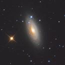 NGC 2841,                                Gabriel Siegl
