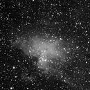 M16 Eagle Nebula,                                Chris Border