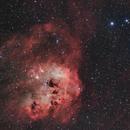IC 410 Les Tétards de l'espace,                                Vincent Caron
