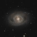 M95,                                Stephan Linhart