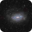 "M 63 or NGC 5055: ""Sunflower, bathed in rivers of the stars"",                                Vadim Kozatchenko"