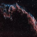 NGC 6992 - Eastern Veil Nebula,                                Tim
