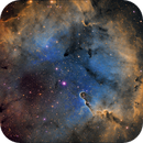 IC 1396 - Elephant Trunk Nebula,                                Chris Fellows