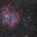 The Rosette Nebula,                                Jonathan Rupert