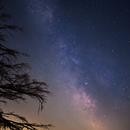 The Milky Way over Camano Island,                                William Maxwell