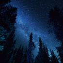 Milky Way in Idaho,                                Michael Lohr