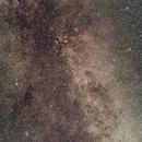 Cygnus,                                Feichen