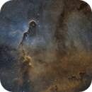 Elephan Trunc Nebula IC 1396A,                                pete_xl
