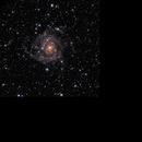 IC342 - The Hidden Galaxy in Camelopardalis,                                Randy Roy