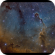IC1396,                                Kenneth Sneis