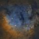 NGC 7822 SHO,                                  Bradley Craig