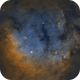 NGC 7822 SHO,                                Brad