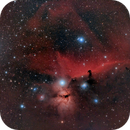 Horsehead & Flame nebula/Region,                                Tyler Jackson Welch