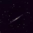 NGC 4244 Work in progres,                                angelo mazzotti