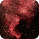 NGC7000 - The North American Nebyla,                                Tom