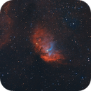 Sh2-101 Tulip Nebula,                                Kathy Walker