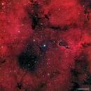 IC1396 & VdB142,                                Francesco di Biase