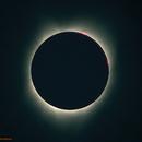 Solar Eclipse,                                jon nicholls