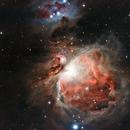 M42,                                Rishi