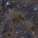 LBN 468 and PV Cephei, Exotic dust of Cefeo,                                Toni Mancera