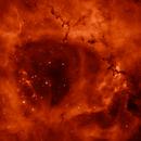 NGC 2244 - H-alpha monochrom,                                Lars Stephan