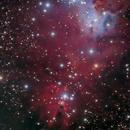 NGC 2264,                                Michael Blaylock