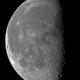 Luna 2-12-2015,                                dami