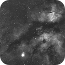 IC 1318 Gamma Cygni Nebula (Butterfly Nebula) -Ha-Meade 80 ED triplet-Orion flattener-ASI 1600 MM-Pro,                                Adel Kildeev
