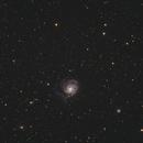 M101 Pinwheel galaxy,                                Pawel Turek