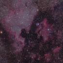 North America Nebula and Pelican Nebula,                                Tyler Millhouse