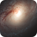 Learning Curve: Hubble Data Processing - NGC 3368 (M96),                                Min Xie