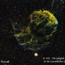 IC 443 - The Jellyfish Nebula  SHO,                                  Paul Borchardt