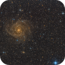 IC 342 - The hidden galaxy,                    Bernhard Zimmermann