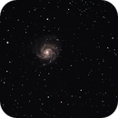 M101,                                Thomas Schnur